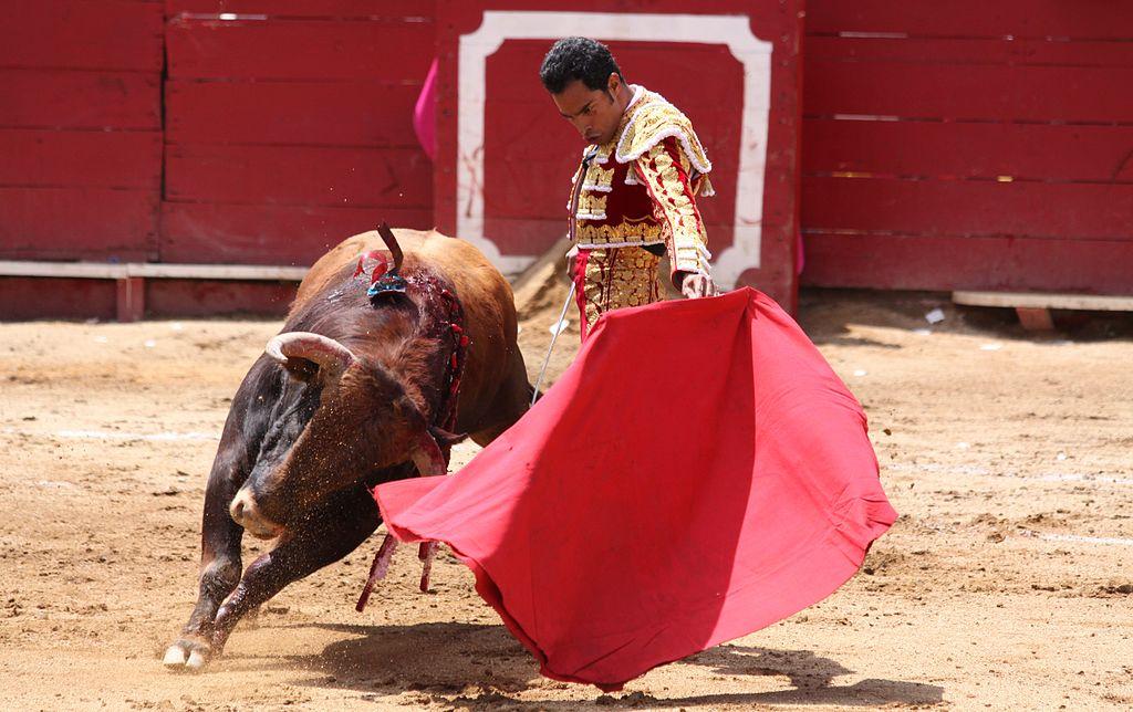 La corrida ou l'affrontement inégal du taureau et de l'homme
